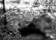 """Ciclista morre tragicamente após ser atropelado por motoristas que disputavam """"racha"""" em Porto Velho"""