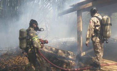 Incêndio atinge área florestal às margens da BR-364 em RO