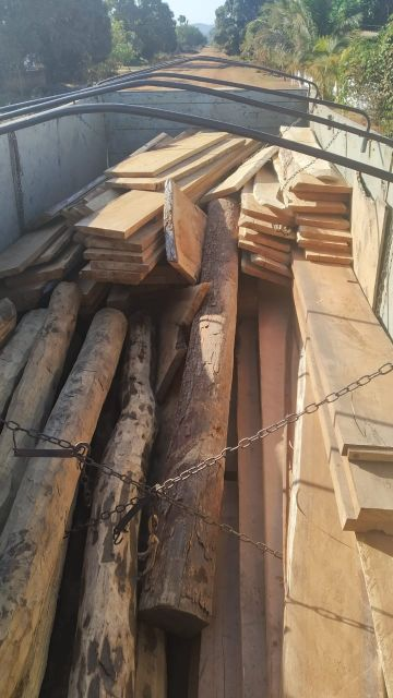 Sem documentos, caminhão é apreendido transportando madeira ilegal em Cabixi