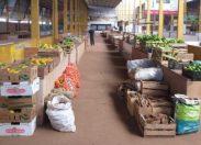 Programa de Aquisição de Alimentos beneficia produtores rurais e entidades
