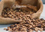 Consumo de café rondoniense vem ganhando destaque e maior introdução no comércio local