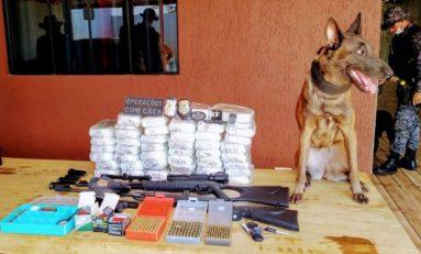 Aproximadamente 50 kg de cocaína são apreendidas em residência com ajuda de cão farejador