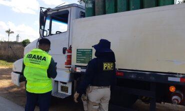 Em Porto Velho/RO, PRF e IBAMA realizam operação conjunta