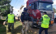 Em Porto Velho, PRF e IBAMA realizam operação conjunta