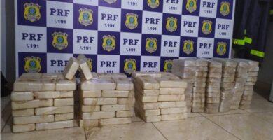 Caminhoneiro é preso transportando mais de 140 de cocaína na BR-364